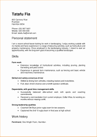 Pizza Delivery Driver Job Description For Resume Best Of Job