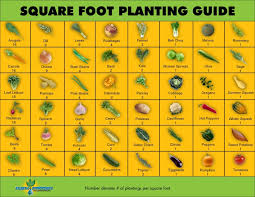 Small Picture Square Foot Planting Guide Square feet Planting and Squares