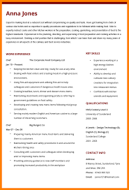 Chef Cv Template Cv For A Chef