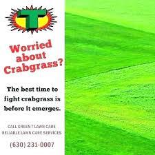 Nutsedge Herbicides Lowes Herbicide Smartermedia Co