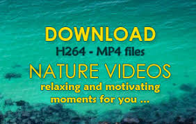 Relaxing Video Relaxing Videos With Nature Sounds To Download The Natural Art To