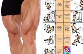Muscle Gain Workout Chart Why Leg Workouts Are So Important For Completing Your Muscle