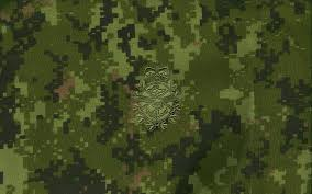 Camouflage Wallpapers (60+ background ...