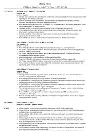 Project Management Agile Project Manager Resume Technical Project