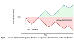 Muscle Recovery Time Chart Why Training Hard Every Day Is A Terrible Idea Stack
