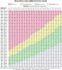 74 Inquisitive Heigh Weight Chart Women
