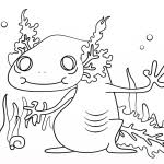 Small Picture Cartoon Axolotl Coloring Sheet Animal Images Of Salamander