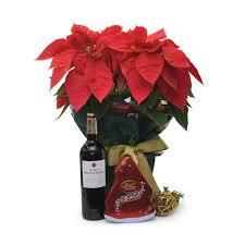 poinsettia gift set 1