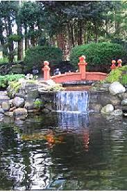 garden pond supplies. Garden Pond With Bridge Photo Supplies