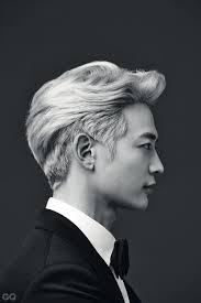 Hairstyles For Men Most Popular Korean Hairstyle Professional Male