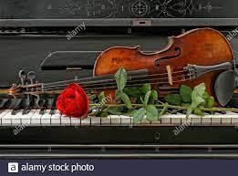 Violin Music Instrument Rose Immagini e Fotos Stock - Alamy