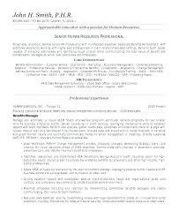 What To Write In A Resume Summary Amazing Summary Examples For Resume Functional Resume Summary Example