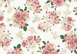 girly vintage tumblr backgrounds. Beautiful Backgrounds Vector Girly Tumblr Vintage Pink And White Roses Background Intended Tumblr Backgrounds A