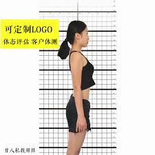 Usd 26 97 Custom Fitness Posture Assessment Diagram Private