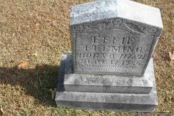 Effie Fleming (1926-1926) - Find A Grave Memorial