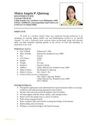 Sample Resumes For Job Application With Example Simple Resume For