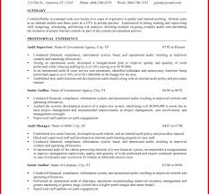 Public Accounting Auditor Resume Create Staff Auditor Resume Sample