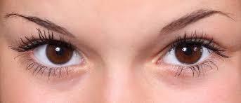 Resultado de imagen para Las cejas más bellas
