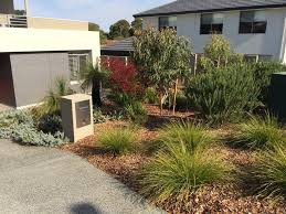 Small Picture Native Australian Plants Native Garden Perth WA Landscape