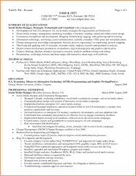 Summary Qualifications Resume Examples The Best Summary Of