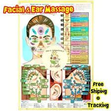Spa Chart Details About 1pcs Thai Facial Ears Face Massage Teaching Poster Spa Reflexive Sketch Chart