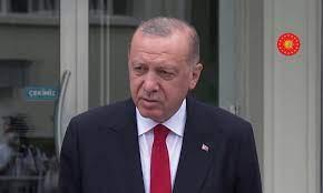 أردوغان يعلن إخماد 196 حريقًا من أصل 208 حرائق في غابات تركيا
