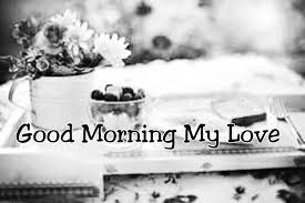 Good Morning My Love Quotes For Him 100 Sweet Cute Good Morning Text Messages for Boyfriend or 43