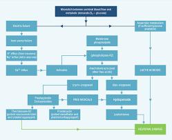 Pathophysiology Of Stroke Actilyse Com