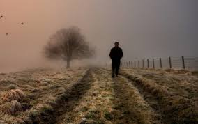 lonely man walking in field wallpaper full hd