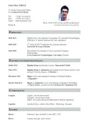 Curriculum Vitae Examples Cool Resume And Cv Examples Office Manager Sample Curriculum Vitae