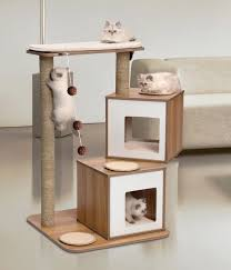 Furniture Accessories:Triangular Contemporary Cat Tree Furniture Beautiful  Baby Cat On Small Modern Wooden Indoor