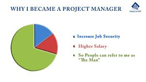 Why I Become A Project Manager Visual Ly