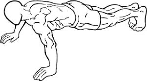 腕立て伏せの種類とやり方|筋肉部位別に効果的なフォームを解説│【公式】公益社団法人 日本パワーリフティング協会