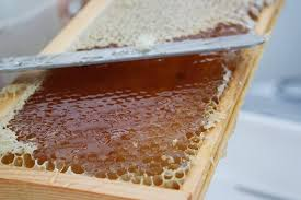 Garden Design Courses Stunning Bee Garden Cosmetics Course Cwrs Cosmetigau'r Ardd Wenyn The