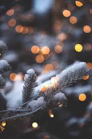 Christmas Lights Aesthetic Just Kiss Me Under The Mistletoe Winter Wallpaper