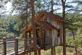 kids tree house for sale. Brilliant For Several Hints On Building A Tree House In Kids For Sale E