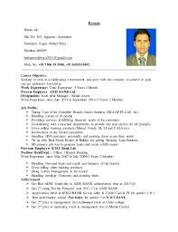 Objective For Resume For Bank Job Career Objective For Bank Magdalene Project Org