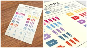 Infographic Resume Examples WellDesigned Resume Examples For Your Inspiration 35