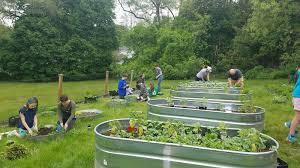 volunteers plant garden for local food pantries