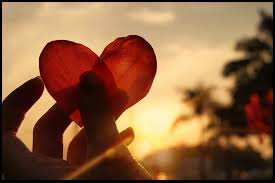 Resultado de imagem para vamos falar de amor