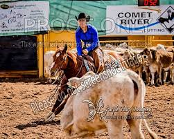 Comet River Cutting 2018 - Cora Potter - Image Gallery - Cutting - Purple  Fairy Imagery