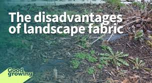 the disadvantages of landscape fabric