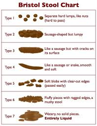 Where On The Bristol Stool Chart Does Your Ibs Sit