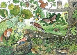 Биосфера Живые организмы на Земле