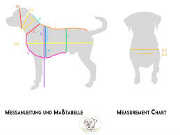 Dog Measurement Chart And Instructions