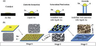 schematic representation of a various steps in vls growth of sns schematic representation of a various steps in vls growth of sns nanowires and b sns nanowires growth at different temperatures stage 1 nncleation