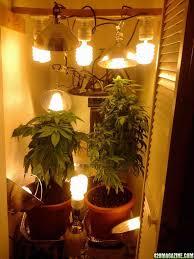 closet grow setup closet grow setup 420 com forums