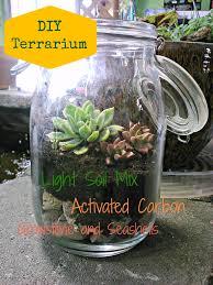 diy succulent terrarium for