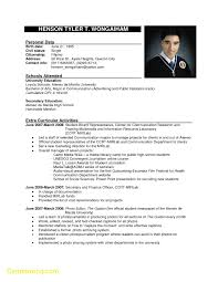 New Resume Template Jobstreet Best Templates