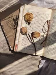 Book aesthetic ...